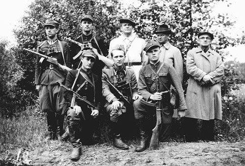 Организация партизанских отрядов на примере Швейцарии.